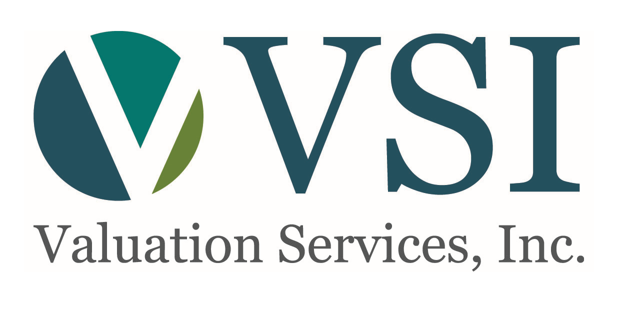 Valuation Services, Inc. logo