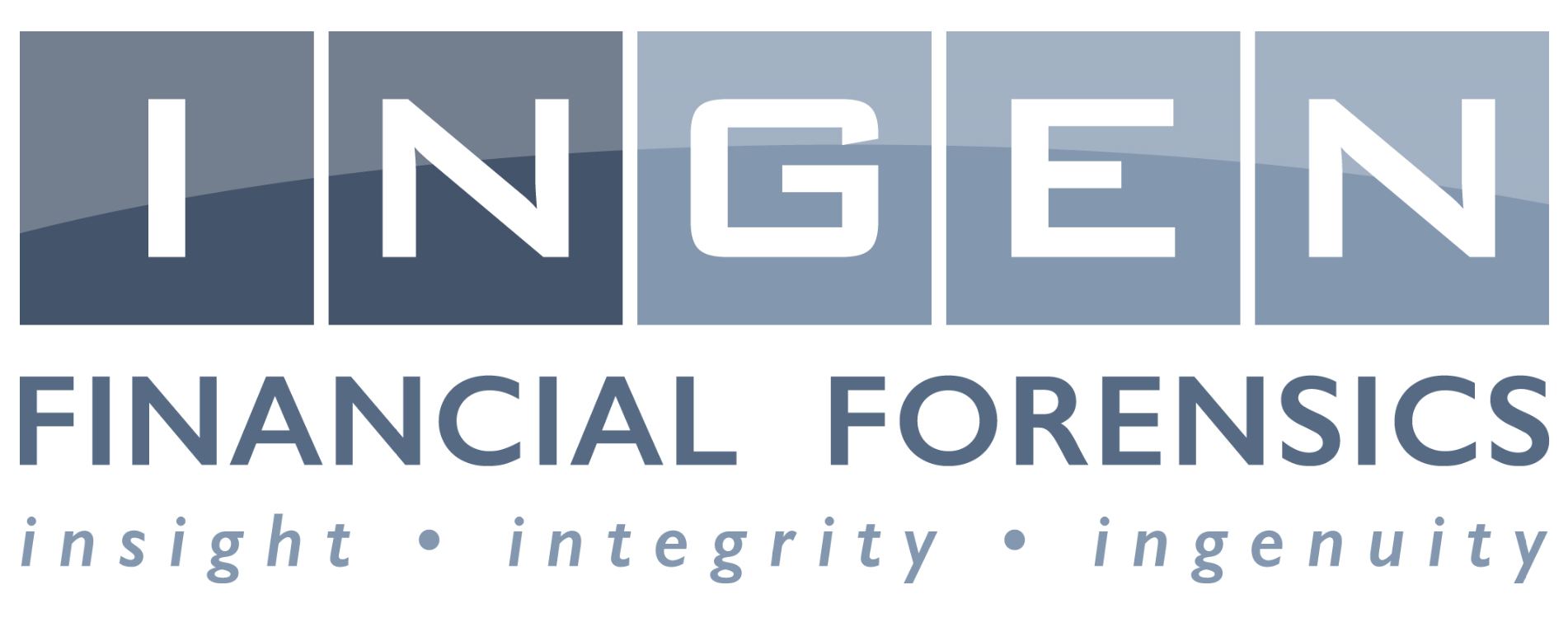 Ingen Financial Forensics logo