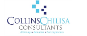 Collins Chilisa Consultants logo
