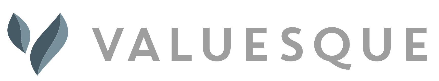 VALUESQUE logo